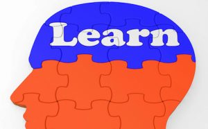Learn Head Meaning Education Learning Studying Training And Research